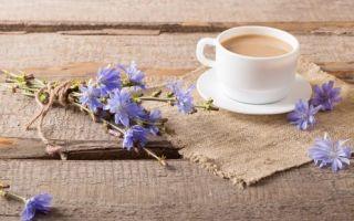 Цикорий при беременности: польза и вред, как пить