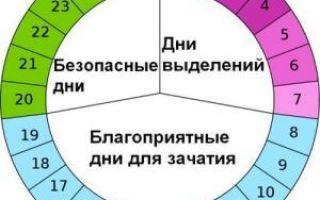 Выделения до, во время и после овуляции: разновидности и значение