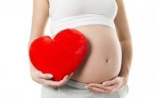 Валокордин при беременности: возможность использования, сроки, опасности, замена