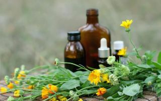 Циклодинон при эндометриозе: инструкция по применению препарата