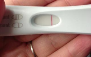 Тест на беременность с определением срока: принцип работы и точность результатов