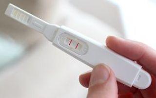 Срок годности теста на беременность: инструкция использования и описание
