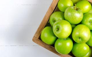 Яблоки при беременности: полезные свойства, вред, противопоказания, состав, калорийность, сколько можно, способы употребления