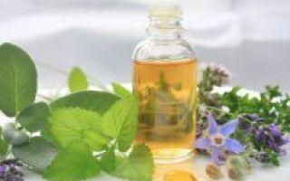 Травы для сокращения матки: список эффективных растений и рецепты