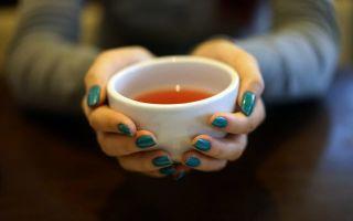 Чайный гриб при беременности: можно ли пить и как заваривать