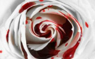 Кровотечение из матки: виды, причины, симптомы, первая помощь