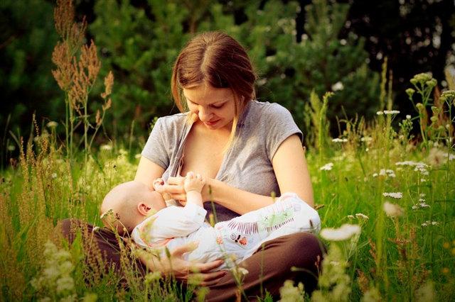 Каркаде при беременности: понятие, разрешение, опасности, норма, приготовление, рецепты