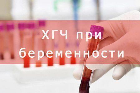 Анализ крови на беременность на ХГЧ: что это, зачем назначают, может ли быть ошибка, сколько ждать, цена