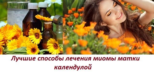 Календула при миоме матки: полезные свойства