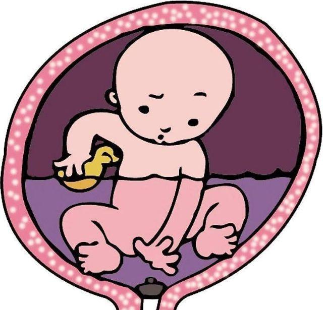 Пробка при беременности: что это, зачем нужна, когда отходит?