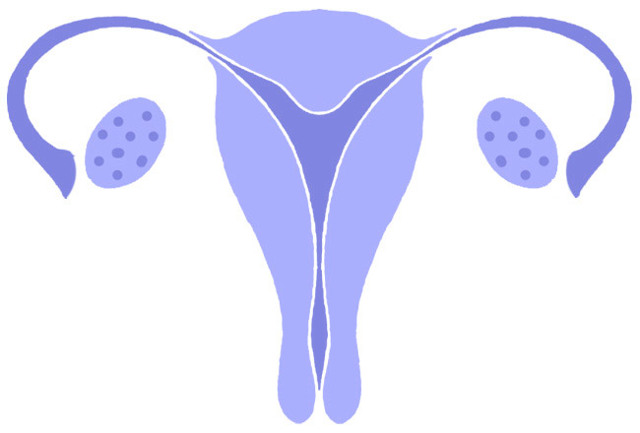 Интактная матка: причины, симптомы, диагностика, лечение
