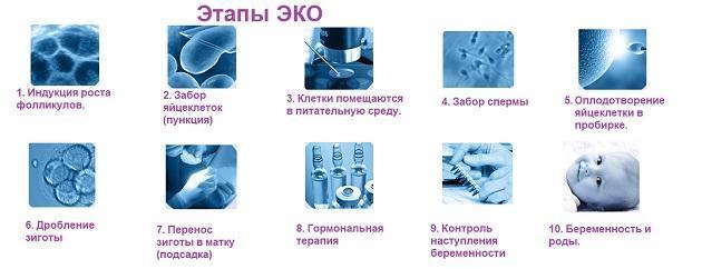 Препараты для стимуляции овуляции при ЭКО: описание