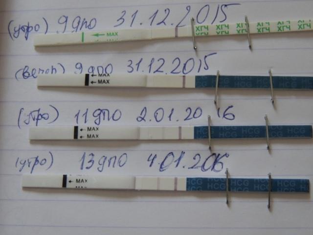 Тест на беременность БиБи-тест: отличие от остальных, какова чувствительность, ошибки, стоимость, инструкция