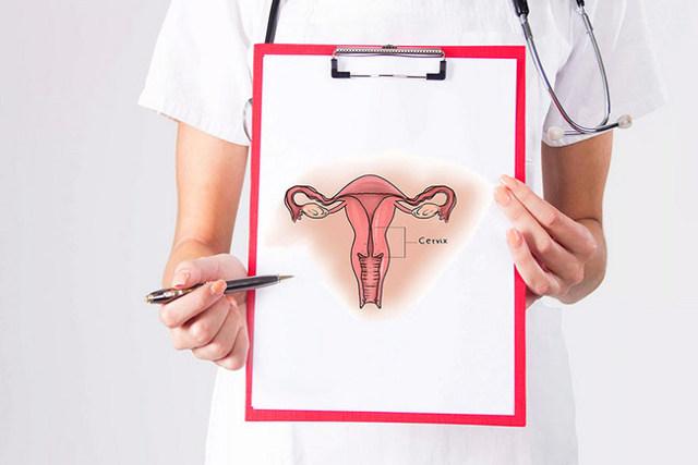 Шейка матки по дням цикла: как проверить самостоятельно?