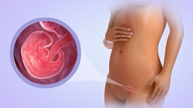 Токсикоз при замершей беременности: бывает ли, что делать