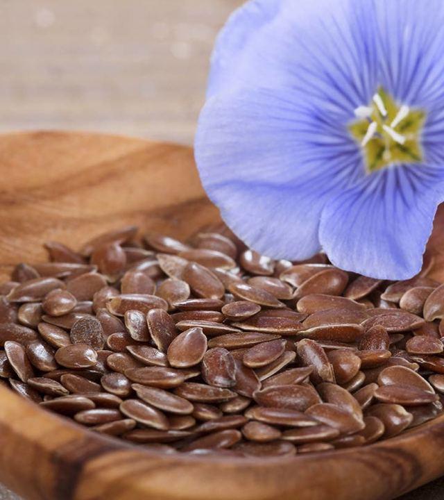 Семена льна при беременности: польза и вред