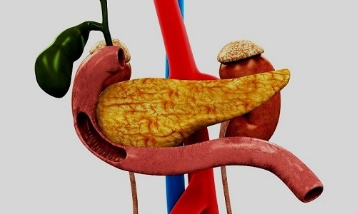 Болит поджелудочная при беременности: симптомы, причины, диагностика, лечение, последствия