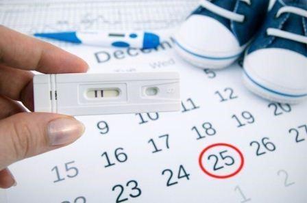 Фертильность и овуляция: отличия, определение фертильных дней