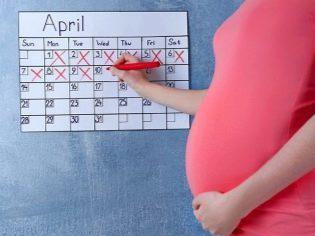При таких размерах, сколько недель беременности?