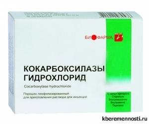 Кокарбоксилаза при беременности: особенности применения