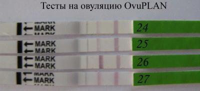 Ователь: тест на овуляцию, особенности использования и расшифровка
