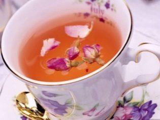Иван-чай при беременности: можно ли пить беременным, польза напитка, как готовить иван-чай во время беременности