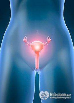 как забеременеть при загибе матки, виды загибов, причины возникновения и способы лечения
