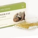 Барсучий жир при беременности: показания, противопоказания