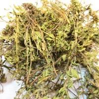 Можно ли использовать чабрец при беременности? Способы использования травы. Показания и противопоказания к применению