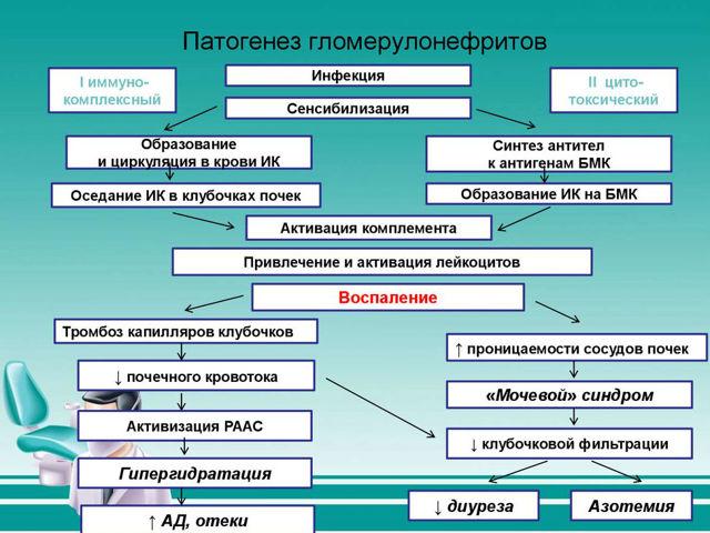 Пиелонефрит при беременности: симптомы, причины, лечение, профилактика, формы