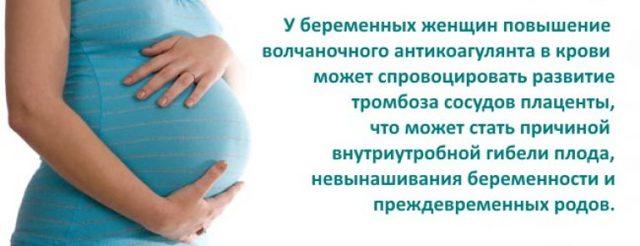 Волчаночный антикоагулянт при планировании беременности: показания, как сдавать анализ, показатели, лечение