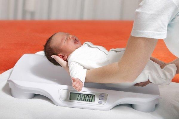 Вес плода по неделям беременности: нормы