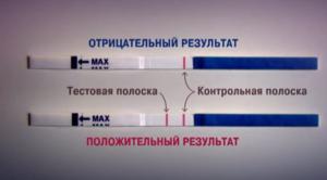 Срок годности теста на беременность: всё, что нужно знать