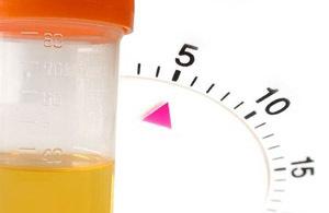 Суточный диурез при беременности норма: что это за анализ, как проводится, норма при беременности, пример расчета, отклонения