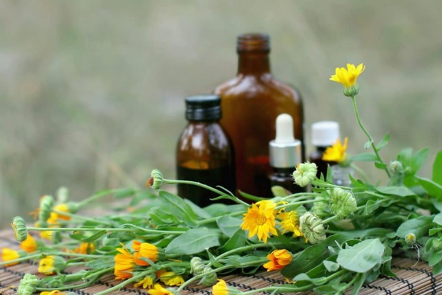 Циклодинон при эндометриозе: действенный натуральный препарат
