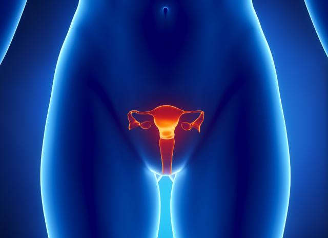 Химическая коагуляция эрозии шейки матки: особенности проведения процедуры