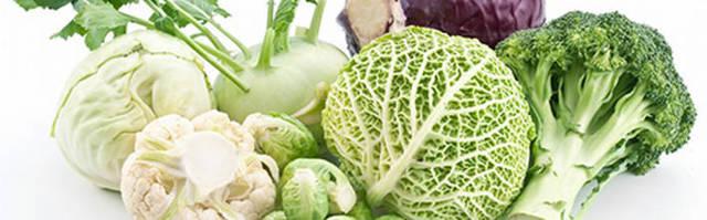 Капуста при беременности: можно ли есть белокочанную и цветную капусту, в каком виде ее можно есть, противопоказания