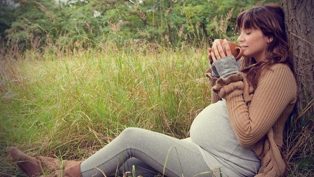 Можно беременным пить крапиву
