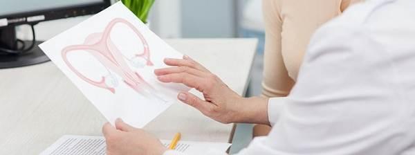 Миометрий матки: особенности структуры слоя и заболевания