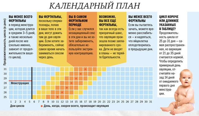 Вероятность беременности при прерванном ПА: что говорит статистика?