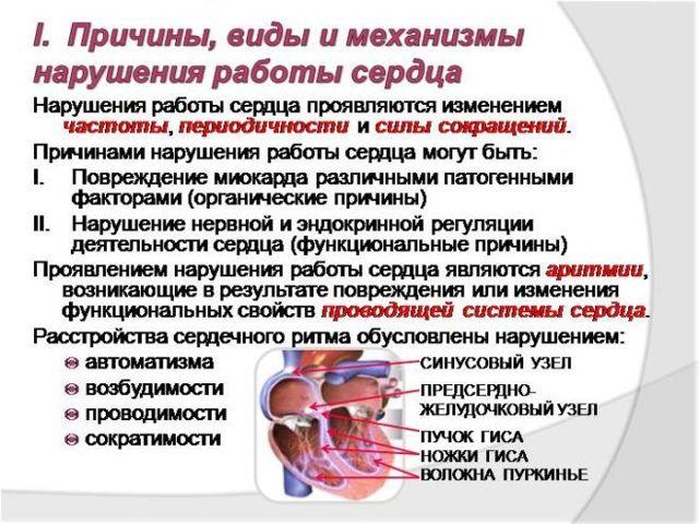 Пульсирует живот при беременности: причины, пульсация с болью, как отличить опасную от неопасной, как убрать, профилактика