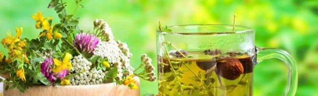 Эндометриоз: лечение народными средствами, рецепты