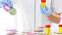 Бактерии в моче при беременности: причины, симптомы, влияние, диагностика, лечение, профилактика