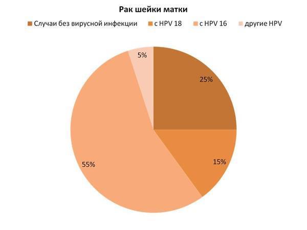 ВПЧ и рак шейки матки: связь, как не допустить развитие рака?