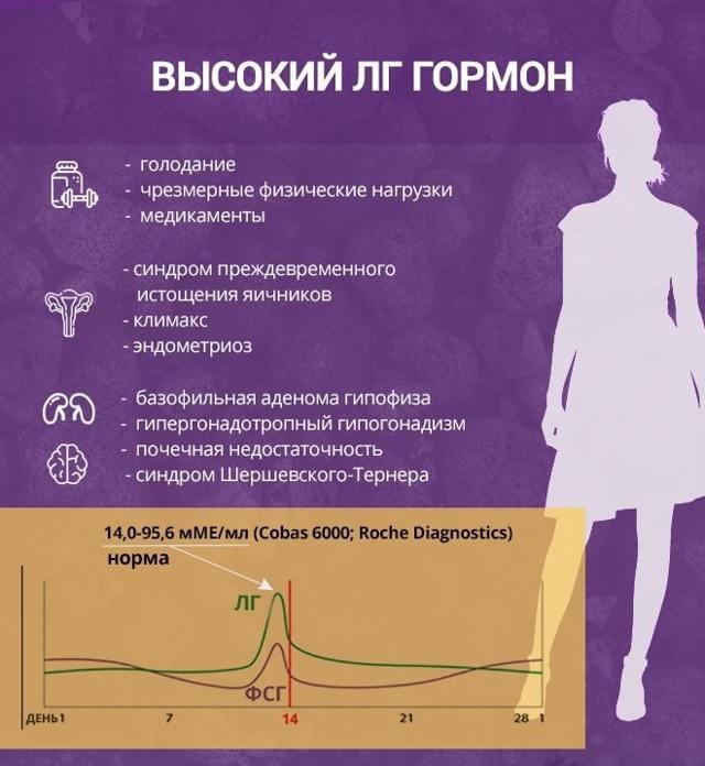 Какие гормоны отвечает за овуляцию: виды, норма и отклонения