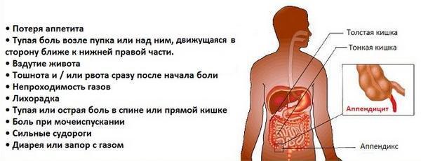 Жжение в животе при беременности: причины, диагностика, лечение, профилактика