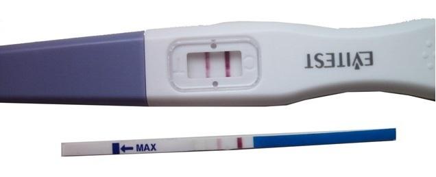 Может ли тест на беременность быть положительным, если беременности нет: причины, стоит ли обращаться к врачу?