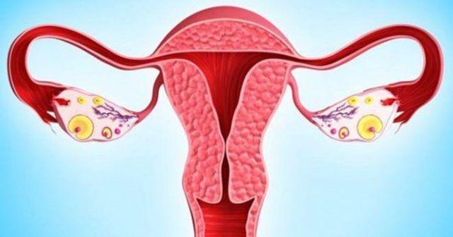 Варикоз матки: симптомы, лечение и последствия