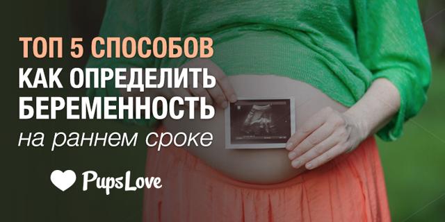 Тест на беременность с определением срока: как работает, плюсы, минусы, с какого дня можно проводить, стоимость