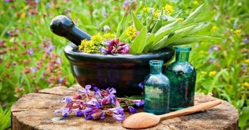 Фитотерапия при климаксе: особенности и рецепты для лечения
